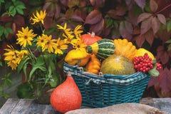 三个不同美丽的成熟南瓜在窗台在秋天庭院的背景中说谎在房子里 特写镜头 复制 库存图片