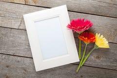 三个五颜六色的大丁草花和照片框架 库存照片