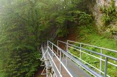 三个冠小山的台阶 免版税图库摄影