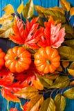 三个塑料南瓜和叶子秋天概念 免版税库存图片