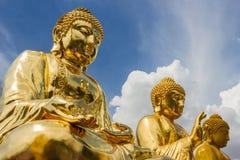 三个大金菩萨雕象 射击在Wat Trimitr Vityaram Voravihahn,曼谷,泰国 免版税库存照片