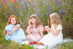 三个孩子吃素食食物在夏天领域的野餐 库存照片