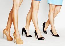三个对在hight的妇女腿停顿在白色背景隔绝的鞋子,时髦的夫人概念 免版税库存图片