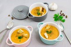 三个小服务罐或碗用奶油色汤由红色小扁豆制成用面包干、香料和草本荷兰芹,香菜 库存照片