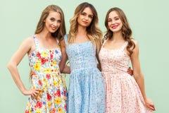 三个幸福年轻成人女孩画象  免版税库存照片