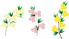 三个开花的树分支 免版税库存照片