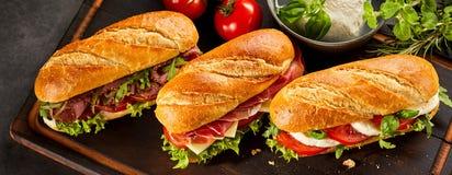 三个新鲜的三明治三重奏  库存照片