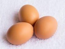 三个新鲜的鸡鸡蛋 免版税库存图片
