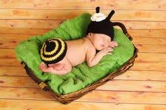 三个星期的老女婴佩带的土蜂服装 免版税库存图片