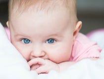 三个月的婴孩 免版税库存图片