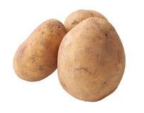 三个未加工的马铃薯 库存照片