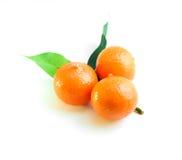 三个桔子和绿色叶子 库存照片
