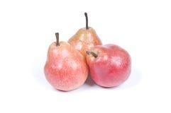 三个梨 免版税库存图片