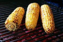 三个烤玉米 库存图片