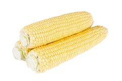 三个玉米穗 免版税库存照片