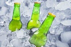 三个瓶在冰的啤酒 库存图片
