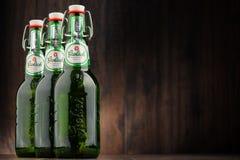 三个瓶Grolsch啤酒 库存照片