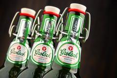 三个瓶Grolsch啤酒 免版税图库摄影