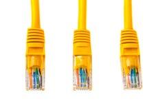三个电缆接头到一根以太网钢缆或黄色补丁绳子的头rj45里与双铰线 网络, RJ45,插座 查出 免版税库存照片