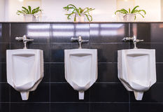 三个白色尿壶在人卫生间里 库存照片