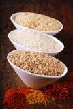 三个碗用米和印第安香料 库存照片