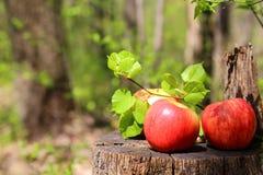 三个红色成熟水多的苹果在与石灰tr的一个木树桩说谎 库存照片