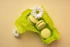 三个绿色开心果蛋白杏仁饼干在有绿色w的一个礼物盒结块 库存照片