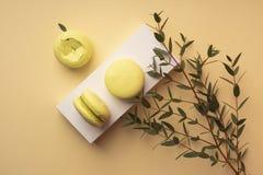 三个绿色开心果蛋白杏仁饼干在有b的一个白色礼物盒结块 免版税库存图片