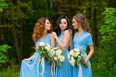 三个美丽的女傧相 库存图片