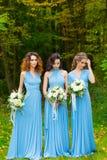 三个美丽的女傧相 免版税图库摄影