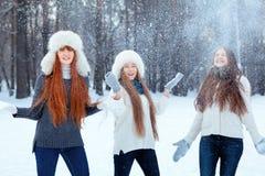 三个美丽的女孩画象在冬天公园 图库摄影