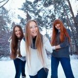 三个美丽的女孩画象在冬天公园 库存照片