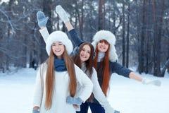 三个美丽的女孩画象在冬天公园 免版税图库摄影