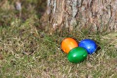 三个色的复活节彩蛋在树下 图库摄影