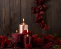 三个蜡烛在黑暗的背景机智的绯红色和桃红色颜色 库存图片