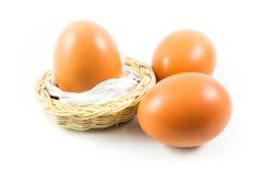 三个鸡蛋在白色背景中 库存照片