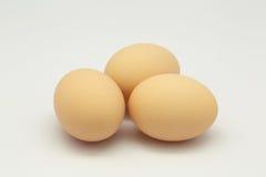 三个鸡蛋 库存照片