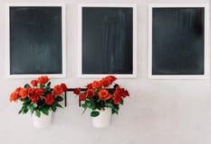 三个黑板和两个微型玫瑰罐在水泥难看的东西墙壁上 免版税库存图片