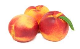 三个整个成熟油桃(被隔绝) 库存照片