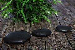 三个黑温泉或祷告石头和草本 库存图片