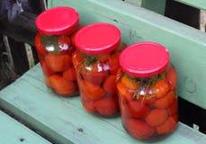 三个玻璃罐头在绿色长木凳dagonal的红色蕃茄 库存照片