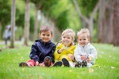 三个年轻男孩坐草在公园和微笑 库存图片