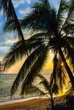 三亚海岛海岸  库存照片