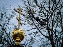 三位一体大教堂在卡卢加州在俄罗斯 免版税库存图片