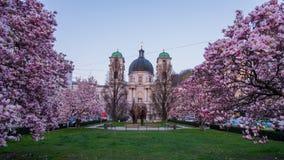 三位一体教会在春天 免版税库存照片