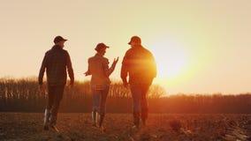 三位农夫向前在一个被犁的领域努力去做在日落 农夫年轻队  库存图片