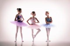 三位小芭蕾舞女演员在舞蹈演播室 图库摄影