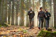 三位林务员通过森林一起走 库存照片