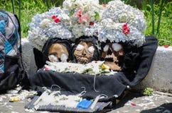 三位死的国王 免版税库存图片