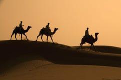 三位骆驼和骑师现出轮廓反对D 免版税库存照片